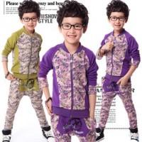 儿童装代理加盟2014春装男童彩印长袖运动装