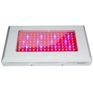 LED植物灯 2014 年热销款 112*3W 300W 大功率LED植物生长灯