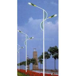 百色德保路灯安装工程公司,百色德保照明亮化安装工程公司