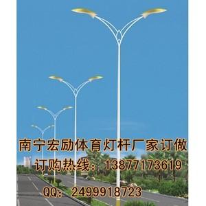 河池市双臂路灯杆造型【南宁宏励照明灯具厂家小周】