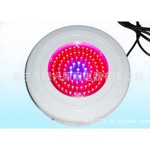 90*3W LED植物灯 大功率植物生长灯 红蓝