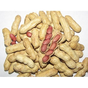 休闲食品 散装原味(红皮)地方特产炒货 2014年原味花生上市 1斤