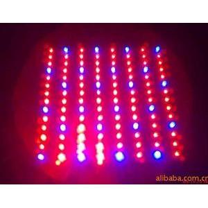 45W LED植物灯 45WLED植物生长灯 红蓝