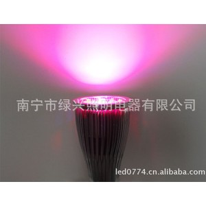 LED植物灯 2014 年最新款 12W 大功率LED植物生长灯 12W 红蓝