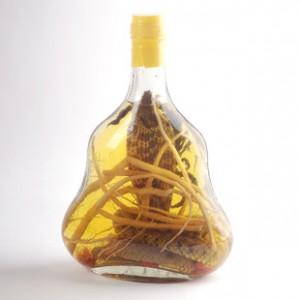 越南特产养生保健酒 祛湿活血 风湿类保健酒 蛇蝎药酒700ml