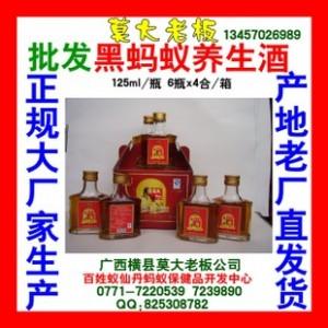 蚂蚁保健酒厂 专业生产125ml黑蚂蚁养生酒 厂价诚征各地经销商