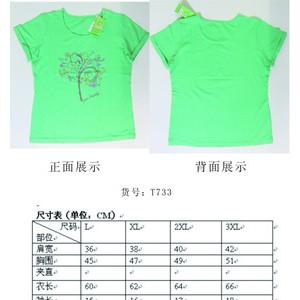 2013热销女装短袖T恤
