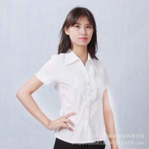 2014新款春装 韩版时尚百搭气质领口 OL女装修身短袖女雪纺衬衫