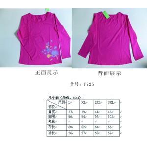 2013秋季新款女装长袖T恤