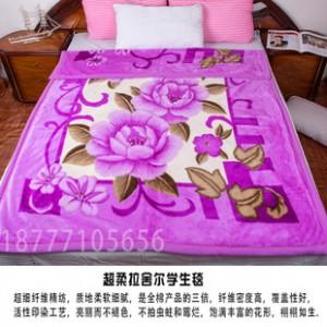 厂家直销加厚双层拉舍尔小双毛毯 单人双人学生绒毯 印花毛毯特价